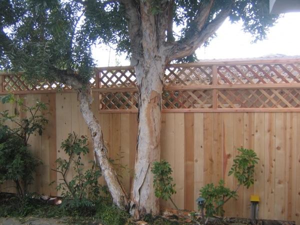 Franco's Remodeling Wood Fence